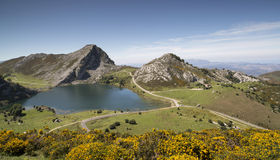 Covadonga lakes in the picos de europa, spain Royalty Free Stock Images