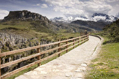 Covadonga path. Path along a mountain at Covadonga Lake, Spain Royalty Free Stock Photography