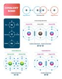 Covalent bond vector illustration. Explanation and example labeled diagram.