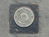 Covata grigia nell'asfalto immagini stock libere da diritti