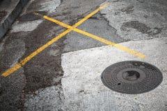 Covata rotonda sulla strada asfaltata Immagine Stock