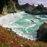 The Cove - Julia Pfeiffer Burns State Park, CA Stock Photography