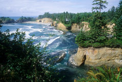 cove little oregon val Royaltyfri Foto