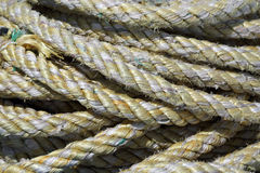 Cove of marine rope closeup Royalty Free Stock Image