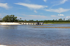 Cove with a sandy beach on the Florida Gulf Coast Stock Image
