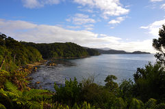 Cove in Stewart Island, NZ. A winter day on remote, Stewart Island, in New zealand royalty free stock photos