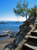 Cove with yachts Royalty Free Stock Photo