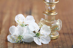 Covenants cherry fragrance perfume Stock Photo