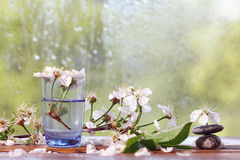 Covenants cherry fragrance perfume Royalty Free Stock Image