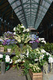 Covent Garden flower stall Stock Images