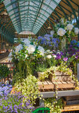 Covent Garden market, London. royalty free stock photography