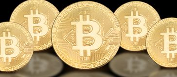 Cover photo for social media profile: a set of bitcoins on a solid background. With beautiful reflection Stock Photography