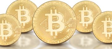 Cover photo for social media profile: a set of bitcoins on a solid background. With beautiful reflection Royalty Free Stock Photo