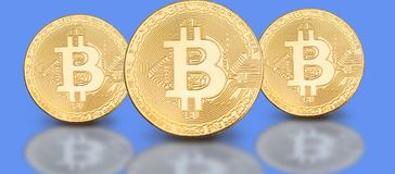 Cover photo for social media profile: a set of bitcoins on a solid background. With beautiful reflection Royalty Free Stock Photos