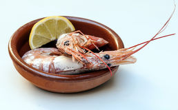 Cover prawns with lemon Royalty Free Stock Image