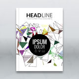 Cover report colorful triangle geometric lines prospectus design background, cover flyer magazine, brochure book cover Stock Photo