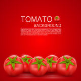 Cover with tomatoes Royalty Free Stock Photos