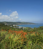 Coverack Stock Image