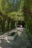 Walkway to the wine tasting. Covered arbor leads you to the tasting room at a Napa Valley winery stock photo