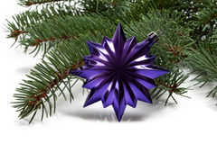 Covered with branch of a Christmas tree and deep purple star Royalty Free Stock Photo