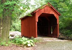 Covered Bridge. In a Connecticut forest Royalty Free Stock Photography