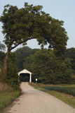 Covered Bridge. A roadway under and arched tree leading to a white Covered Bridge Stock Images