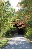 Covered bridge entrance hidden by trees Stock Photography