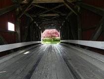 Covered Bridge. Looking into a covered bridge in Eastern New Hampshire with Spring flowers Royalty Free Stock Photography