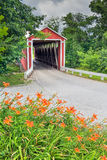 Covered Bridge and Orange Roadside Lilies Royalty Free Stock Images