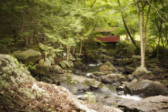 Covered Bridge in the Woods Royalty Free Stock Photo