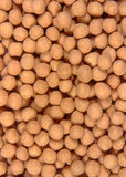 Covered chickpea. BACKGROUND stock images