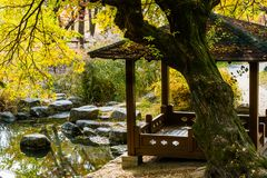 Covered gazebo behind a large old tree located in public park in. Covered gazebo behind a large old tree next to a man made pond surrounded by boulders and tall Royalty Free Stock Image