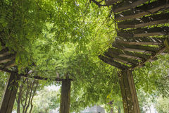 Covered with green wooden shade pavilion Royalty Free Stock Photography