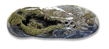 Covered with moss shoes Royalty Free Stock Images