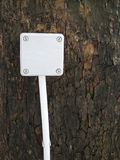 Covered Power Outlet on a Tree Stock Photo