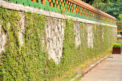 Covered with rattan wall Royalty Free Stock Photos