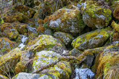 Covered rocks with moss Stock Photography