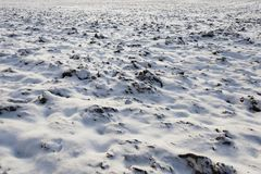 Covered with snow plowed earth. Covered in snow plowed cultivated land in the agricultural field. It has an uneven surface. Photographed close up Royalty Free Stock Photography