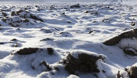 Covered with snow plowed earth. Covered in snow plowed cultivated land in the agricultural field. It has an uneven surface. Photographed close up Royalty Free Stock Photos