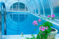 Covered summer pool with a blue tile Stock Photo