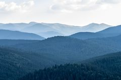 Covered with thick spruce forest mountain slopes of the Carpathi. Ans in the evening haze against the sky and clouds Stock Photography