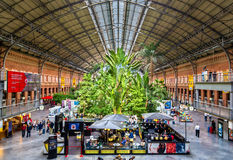 Covered tropical garden inside the old building of Atocha railway station Royalty Free Stock Image