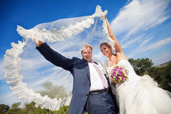 Covered with veil Royalty Free Stock Image