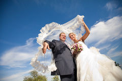 Covered with veil Royalty Free Stock Photo