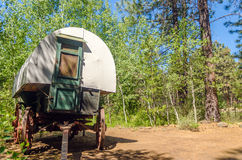 Covered Wagon in a Forest Stock Photos