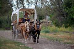 Covered Wagon Pulled By Two Horses. Two horses pull a covered wagon Stock Images