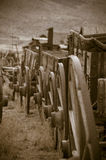 Covered Wagons. Line of wagons in Cody Wyoming Royalty Free Stock Photography