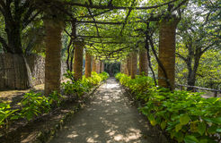 Covered Walkway in Villa Cimbrone Gardens Royalty Free Stock Images