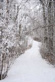 Covered Winter Path stock photo