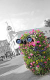 Covert spying secret agent. Photo of a covert spy secret agent with binoculars hiding in a large flower planter street display watching your every move Royalty Free Stock Photos